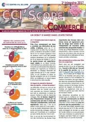CCI'Scope Commerce région Centre val de Loire - 1er trimestre 2017