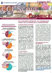 CCIScope Commerce - 2e trimestre 2017